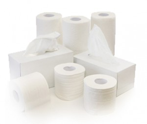 different types of paper towels